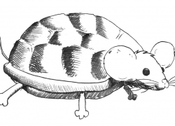 The Murtle